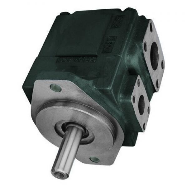 Sumitomo QT51-80L-A Gear Pump #1 image