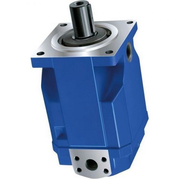 Sumitomo QT5133-80-12.5F Double Gear Pump #1 image