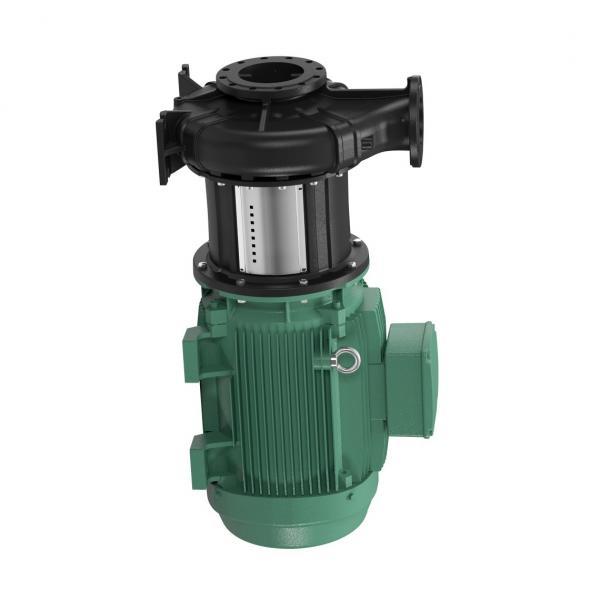 Denison PV10-1L1C-L00 Variable Displacement Piston Pump #1 image