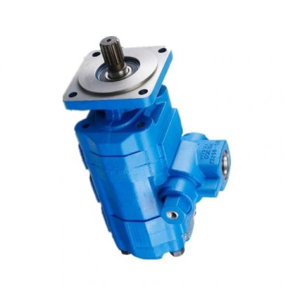 NACHI IPH-55B-50-50-11 Double IP Pump #1 image